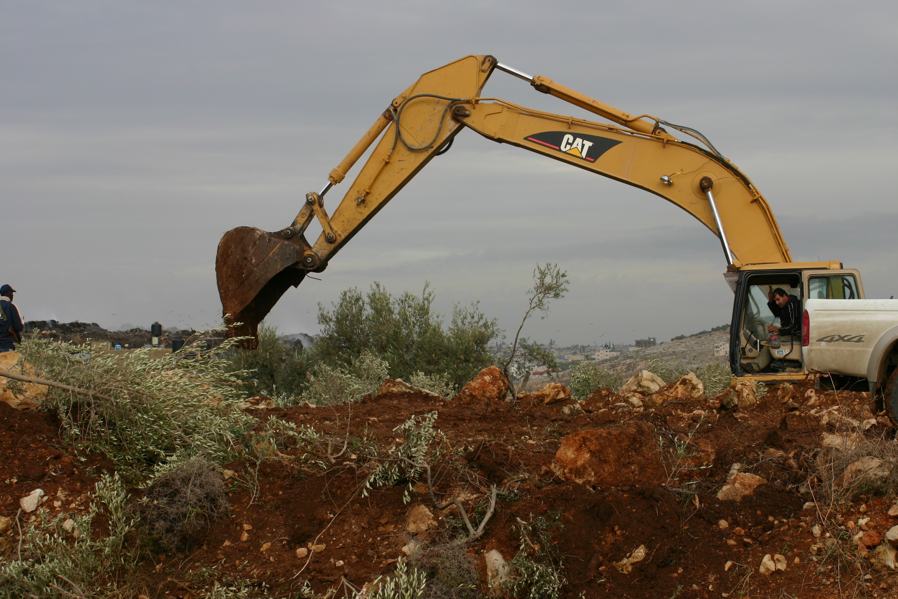 http://pages.ucsd.edu/~gfields/PalestinePhotos/uprootingtreesjabara.2.jpg